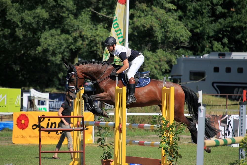Lage_16-08-2013_Springpferde-Pruefung-A_02