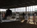 eschenbruch_11-01-2014_training-mit-tanja_01