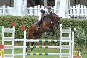 Pferd springt mit Reiter über Hindernis, Vlotho-Exter am 19.07.13