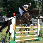 Turnier Lage, Springpferdeprüfung L, Freitag 16.08.13, Pferd: Consuelo, Reiter: Maik Schlingheider