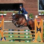 Turnier Lage, 16.08.13 Spf A** Reiter Maik Schlingheider, Pferd Consuelo