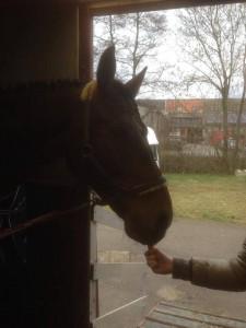 Paderborn, 15.03.14 Bestechungsversuch