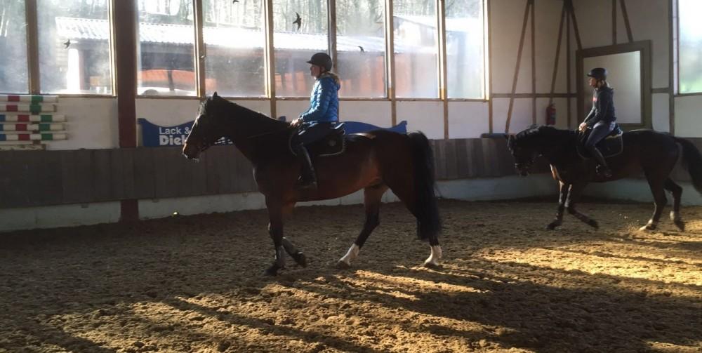 Consuelo beim Training, März 2016
